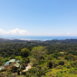 Pico Mar Property Management